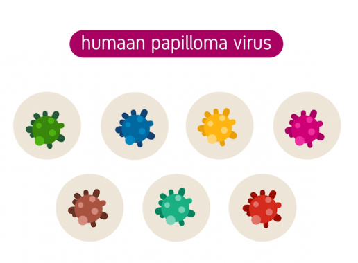 papillomavirus nederlands cd parazitii