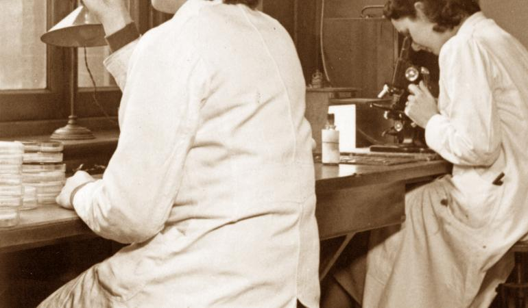Laboratory researchers working on diphtheria 1950
